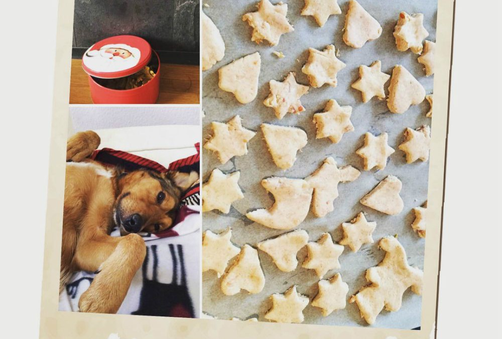 Rezept: Yoshi`s Glutenfreie Bratapfel-Plätzchen