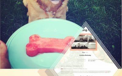 Ernährungsberater für Hunde&Katzen – chW-SE-N of dogs&cats